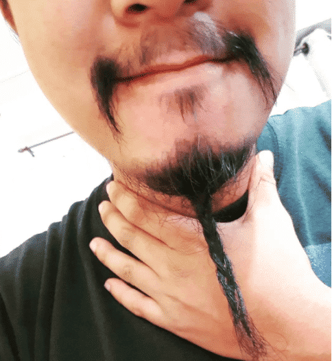 men braided goatee style