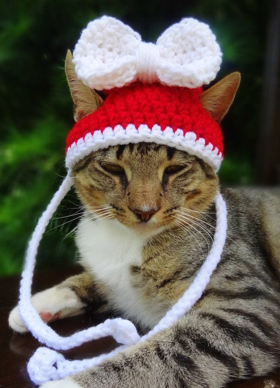 202 Kittens Christmas Outfits - 20 Christmas Costumes For Cats
