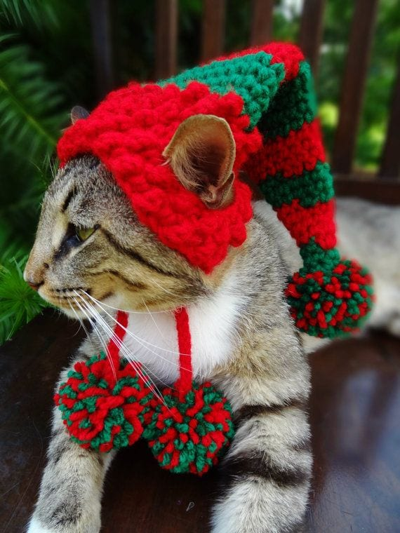 53 Kittens Christmas Outfits - 20 Christmas Costumes For Cats