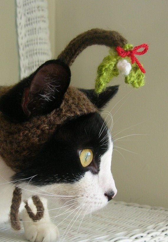 94 Kittens Christmas Outfits - 20 Christmas Costumes For Cats