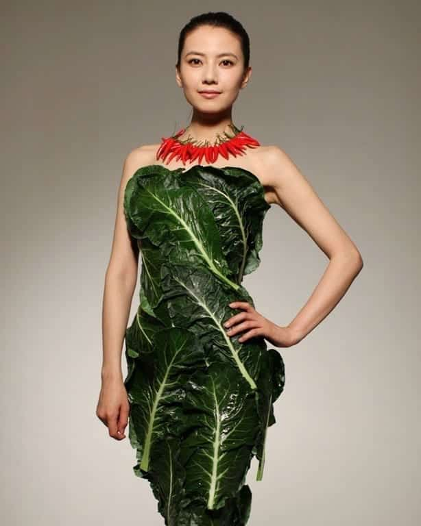 vegetable dress 1