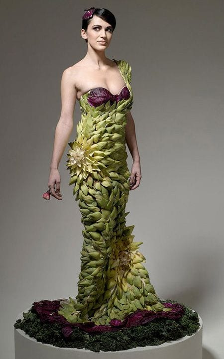 vegetable dress 5
