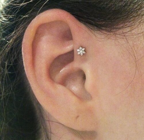 fhelix-500x487 Cartilage Piercings Guide - Every Thing You Need to Know About it