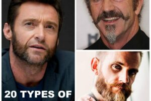 pictures and names of different beard styles