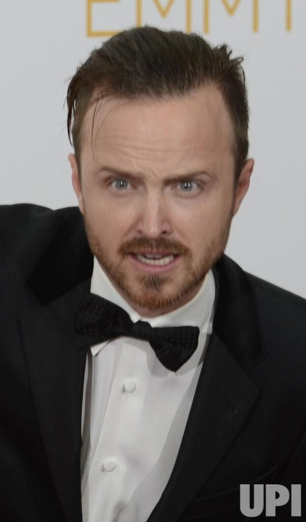 celebrities goatee beards (20)