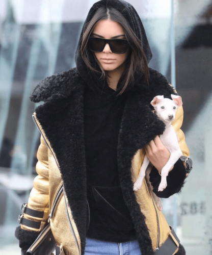 Screen-Shot-2017-06-03-at-1.30.24-AM-416x500 30 Most Stylish Kendall Jenner Outfits of All Time