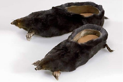 Crazy Animal Shoes