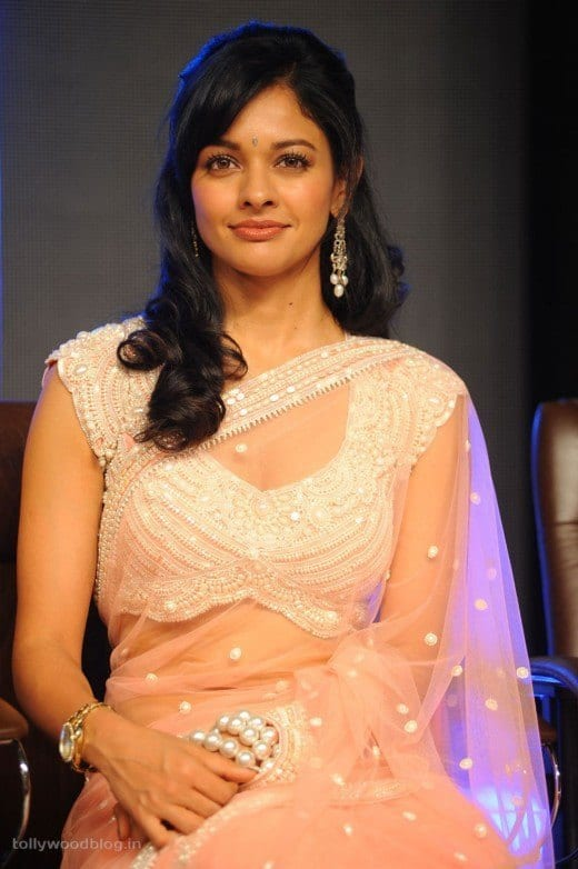 Blouse with Transparent Saree