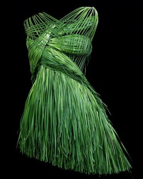 vegetable dress 2