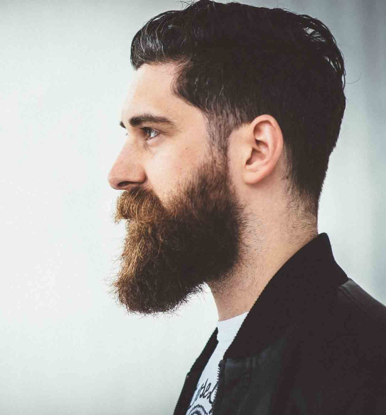 beard styles for with hair beard styles and tips on growing and styling beard 8507