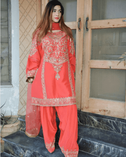 Party Outfits for Pakistani Girls (30)