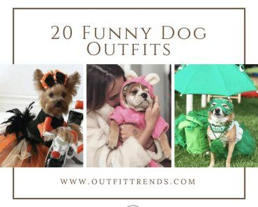funny outfits for dogs